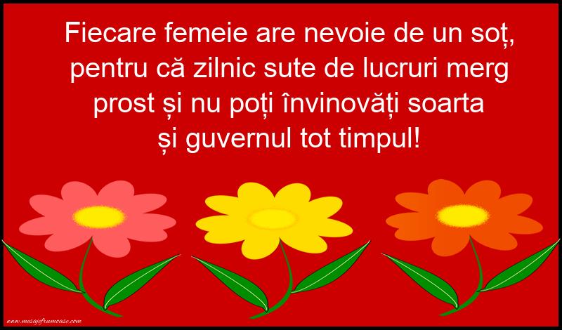 Mesaje amuzante - Fiecare femeie are nevoie de un sot