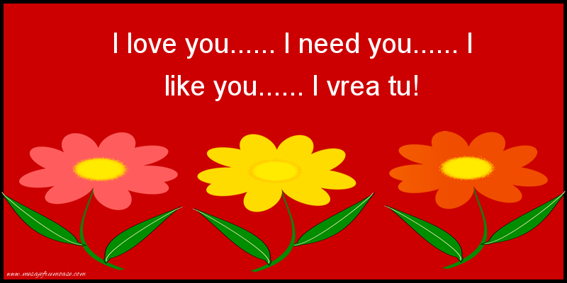 Mesaje amuzante - I love you...... I need you...... I like you...... I vrea tu!