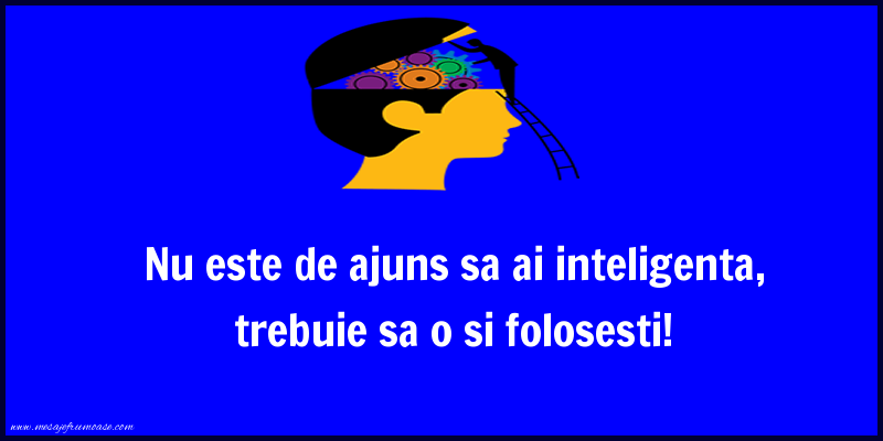 Mesaje frumoase despre caracter - Nu este de ajuns sa ai inteligenta, trebuie sa o si folosesti!