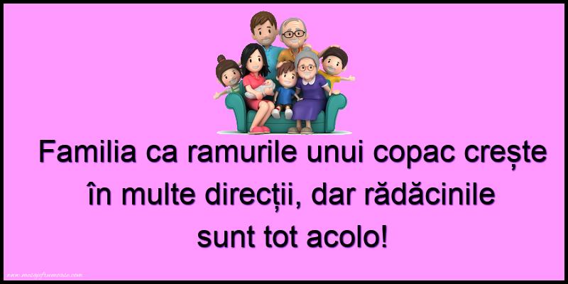 Mesaje frumoase despre familie - Familia ca ramurile unui copac crește în multe direcții...