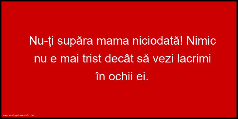 Mesaje frumoase despre familie - Nu-ți supăra mama niciodată!