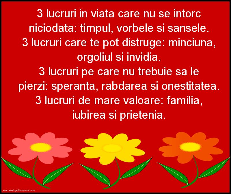 Mesaje frumoase despre familie - 3 lucruri