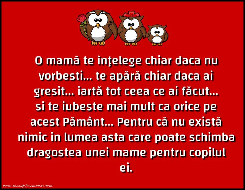 Mesaje frumoase despre familie - O mamă te înţelege chiar daca nu vorbesti