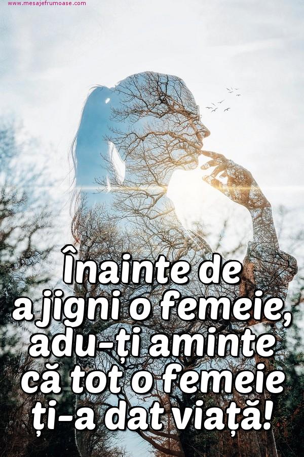 Mesaje frumoase despre femei - Înainte de a jigni o femeie, adu-ți aminte că tot o femeie ți-a dat viață!