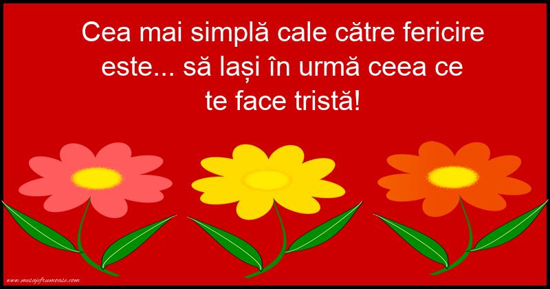 Mesaje frumoase fericire - Cea mai simplă cale către fericire este...