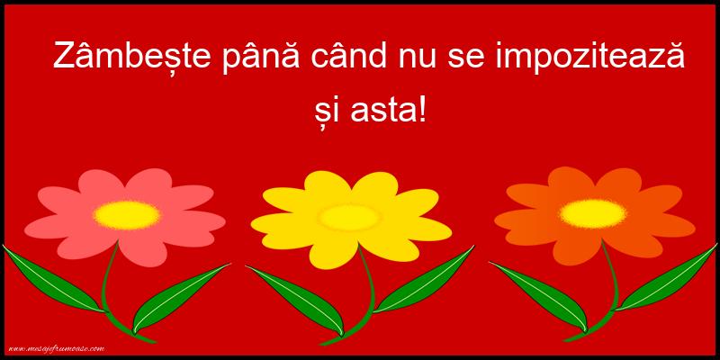 Mesaje frumoase fericire - Zâmbește până când nu se impozitează și asta!