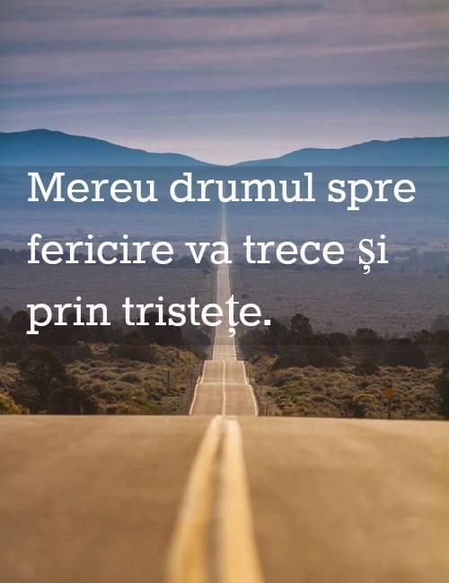 Mesaje frumoase fericire - Mereu drumul spre fericire va trece şi prin tristeţe!