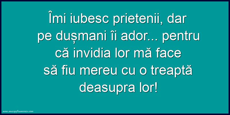 Mesaje frumoase despre prietenie - Îmi iubesc prietenii, dar pe dușmani îi ador...