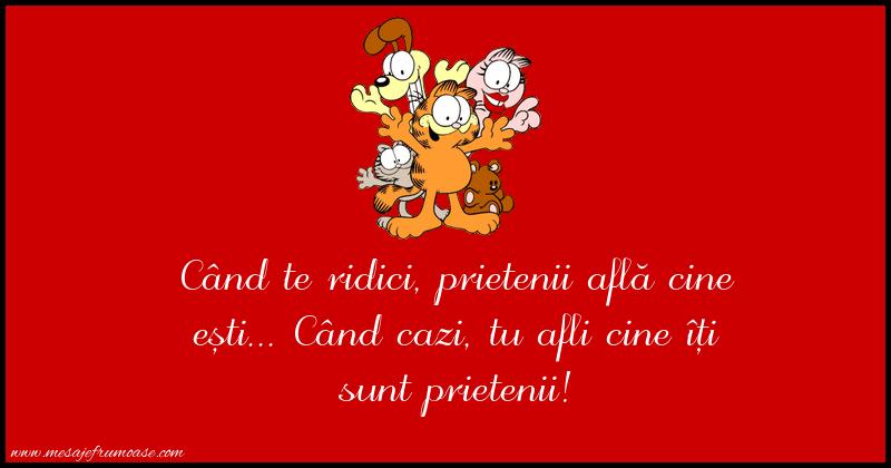 Mesaje frumoase despre prietenie - Când te ridici, prietenii află cine ești...