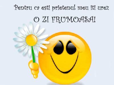 Mesaje frumoase despre prietenie - Pentru ca esti prietenul meu, iti doresc o zi frumoasa!