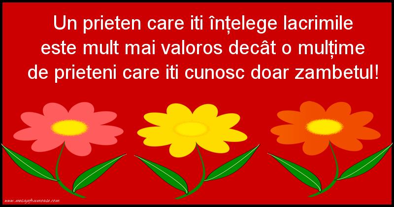 Mesaje frumoase despre prietenie - Un prieten care iti înţelege lacrimile