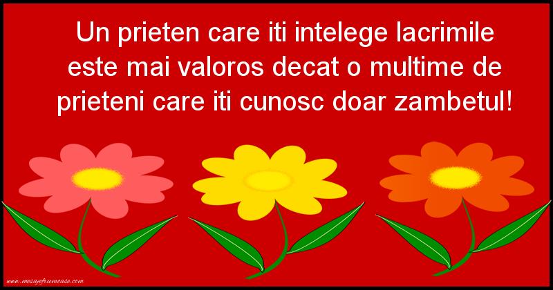 Mesaje frumoase despre prietenie - Un prieten care iti intelege lacrimile este mai valoros