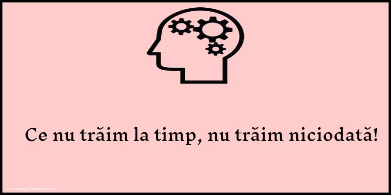 Mesaje frumoase despre viata - Ce nu traim la timp, nu traim niciodata!