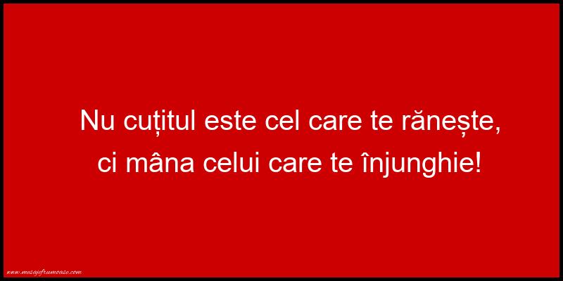Mesaje frumoase despre viata - Nu cutitul este cel care te raneste