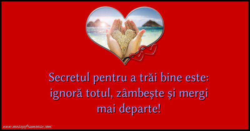 Mesaje frumoase despre viata - Secretul pentru a trai bine este: ignora totul, zambeste si mergi mai departe!