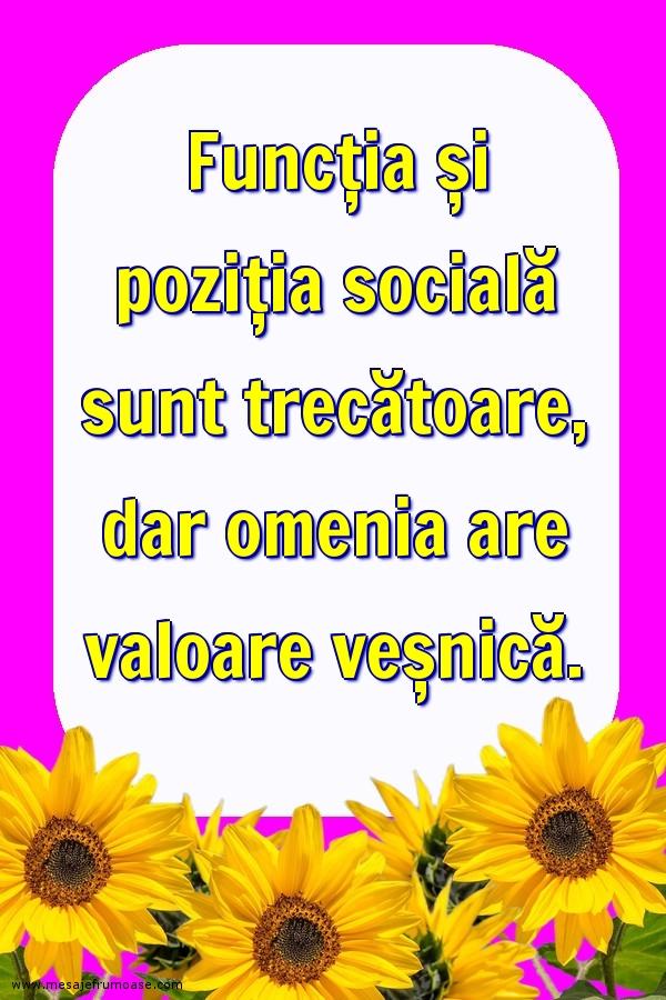 Mesaje frumoase despre viata - Funcția și poziția socială sunt trecătoare...